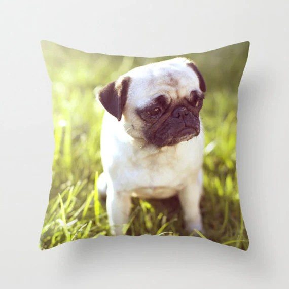 Dog Pillow Sad Pug Pillow - 16 x 16 Pillow Cover