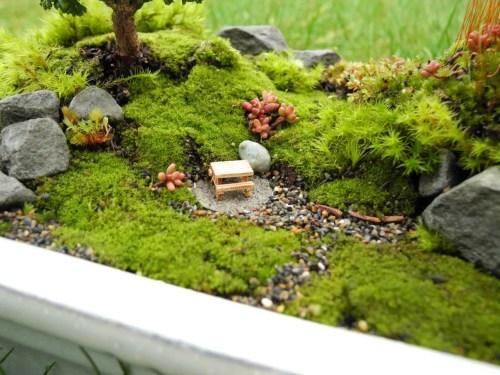 Glancing Live Moss Miniature Moss Fairy Fairy Garden Ideas All Fairy Garden