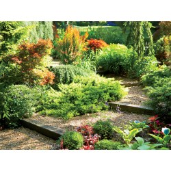 Small Crop Of Images Of Landscaping Ideas