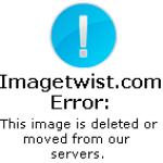Yaviah – El Gato Negro (Mixed by DJ Wincho) (2006)