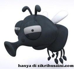 lalat, lalat musuh negara,fly wanted, fly cute, lalat yang jahat
