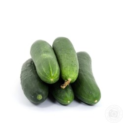 Small Of How To Store Cucumbers