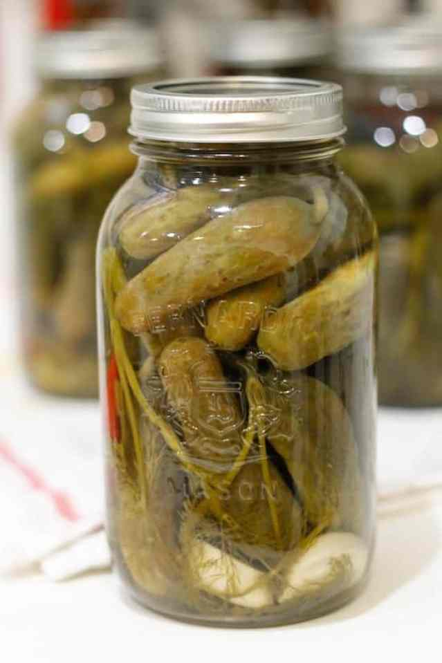 Spicy garlic dill pickles 14