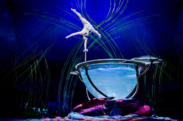 Amaluna_act-Water-Bowl