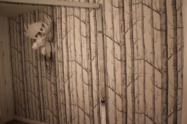 Cole & Son Wall Paper Bedroom Design FAB (2)