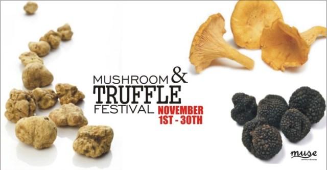 truffe  MUSE