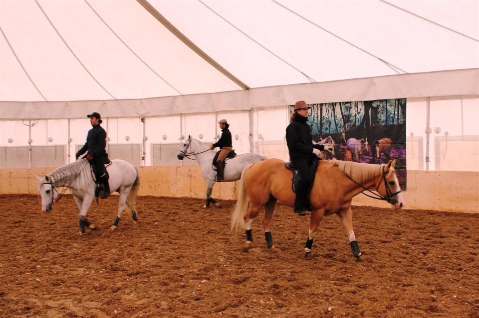 Odyesso Cirque Cavalia Calgary FAB (1)