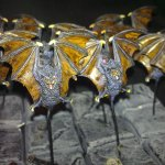 Warhammer Quest - Monsters - Monsters - Giant Bats, close-up