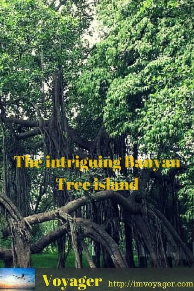 The intriguing Banyan Tree island