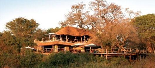 home-safari1