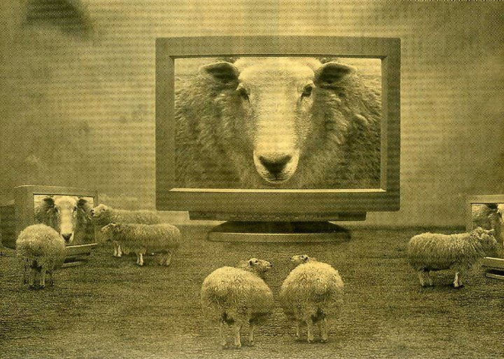 6 Immediate Health Benefits Of Not Believing Mainstream Media