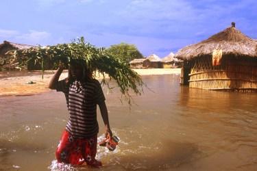 El Niño weather pattern: Africa in 2016