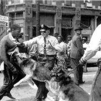 """1944 yılında Colombus, Ohio'da 16 yaşındaki bir siyah öğrenci """"Hitler'e savaştan sonra ne yapmak lazım"""" konulu kompozisyon yarışmasını tek bir cümleden oluşan yazısıyla kazandı. """"Cildini siyaha çevirip hayatının geri kalanını Amerika'da yaşamasına izin verelim."""""""