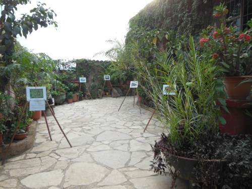 The beautiful garden entrance to the Tea & Chocolate Place