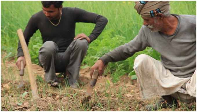 Farmers preparing their fields for multi cropping in Madhya P:radesh (Image by Development Alternatives)
