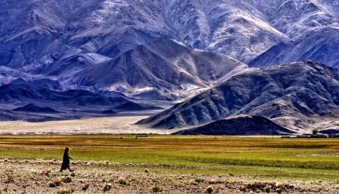 A Ladakhi women walking to the paddy fields, Ladakh, India. (Photo by Prabhu B Doss)