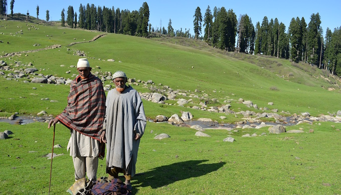 Gujjars and Bakkarwals spend summers in highland pastures along with their livestock. (Photo by Athar Parvaiz)