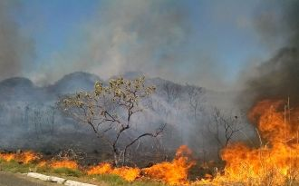 Fires threaten Amazon forests and Brazil's emission targets