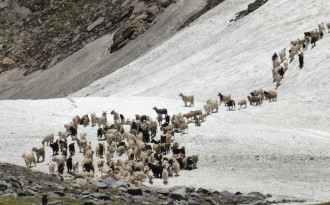 Best of 2016: Pastoral tradition in Spiti faces climate threat