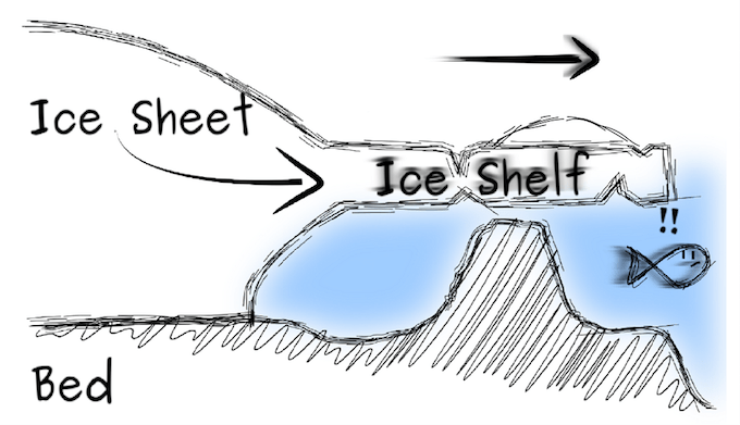 If the ice shelf thins, the ice rise will also disappear, leading to speeding up of melting [image by Reinhard Drews]