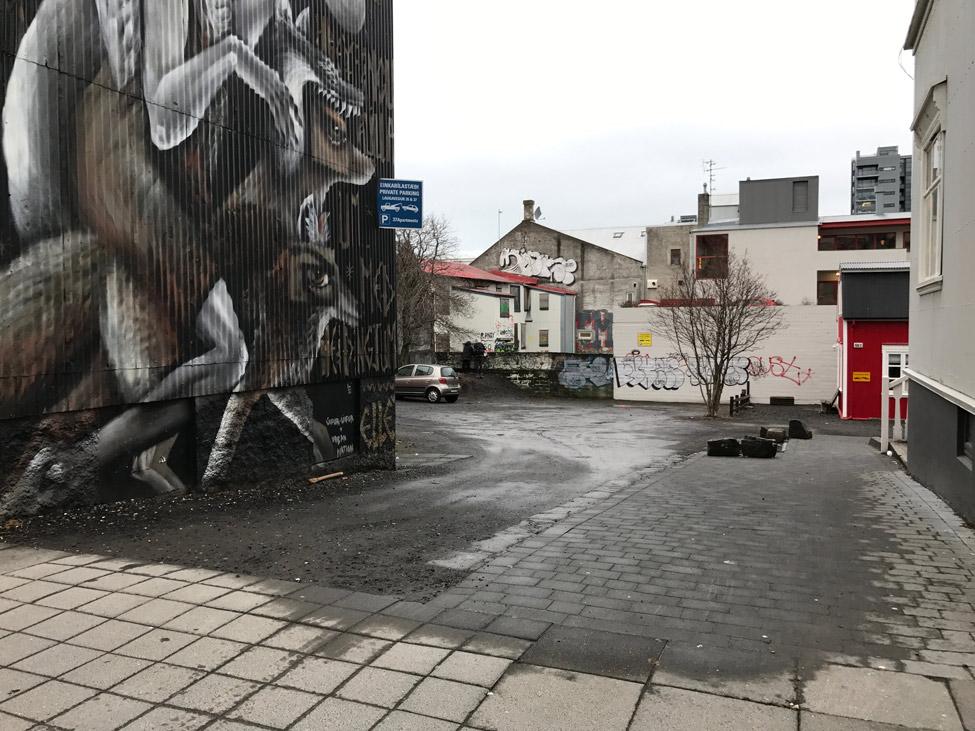 Smekkleysa Plotubuo Reykjavik