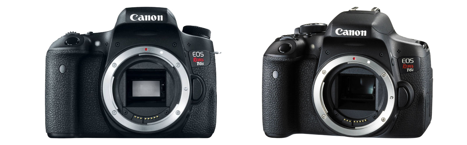 Calmly New Canon Eos Rebels Rebel Rebel Available April 2015 New Canon Eos Rebels Rebel Rebel Available T6s Or T6i T6 Vs T6i Video Quality dpreview T6s Vs T6i
