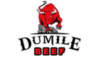 Dumile-Beef Golf Shirt Embroidery Harare