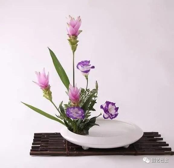 日本花道的五種插花形式之——生花!