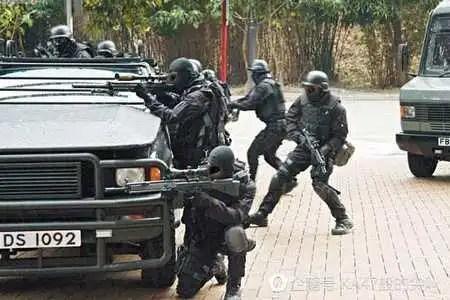 香港守護者,大名鼎鼎的飛虎隊