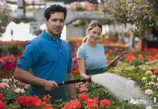 花卉澆水有哪些講究?園藝巴士教你養花!