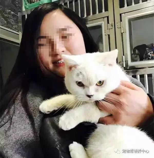 這個女人昨晚震驚了整個麗江,退養貓咪不成竟用如此手段報復!