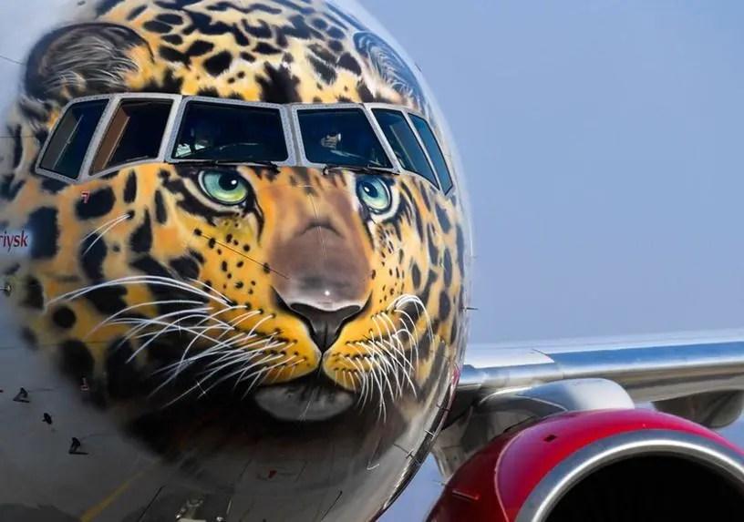 求對面飛行員心陰面積,俄航遠東豹彩繪飛機,呼喚保護瀕危豹類