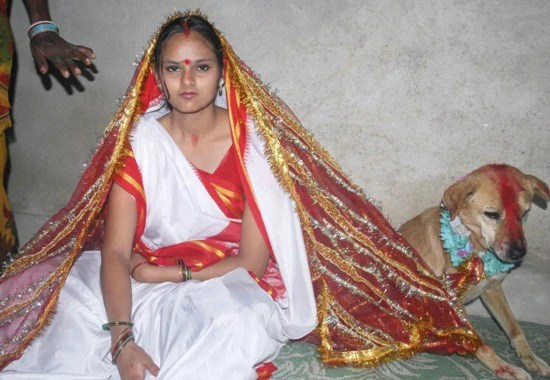 印度又出怪習俗,女孩與狗結婚竟是為了消除厄運求好運,女孩想哭