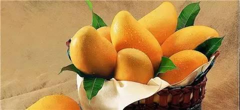 那麼愛吃芒果,關於芒果你知道多少?