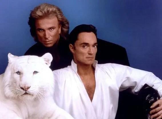 世界上最丑的老虎,沒想到竟然是人類這樣做導致的!