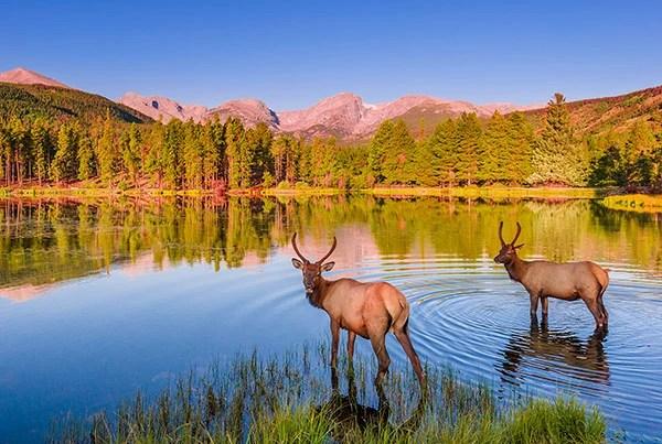 2015年美國訪問量最大的20所美國國家公園,第一名不是黃石