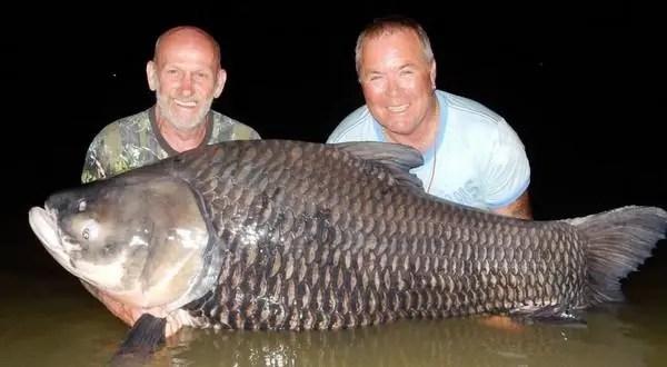 英國兩男子竟用好友骨灰當魚餌 釣到82公斤大魚