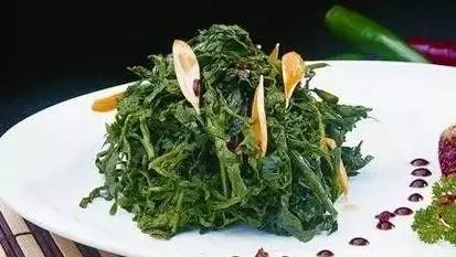它是最好的養生草,吃一吃很有必要!