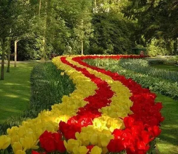 花壇設計第709期