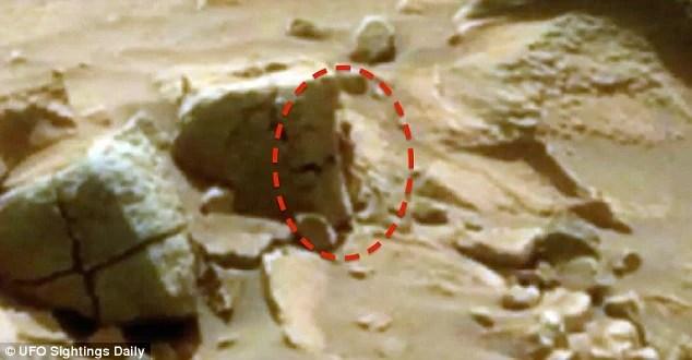 網友通過NASA照片推測火星上有生命存在