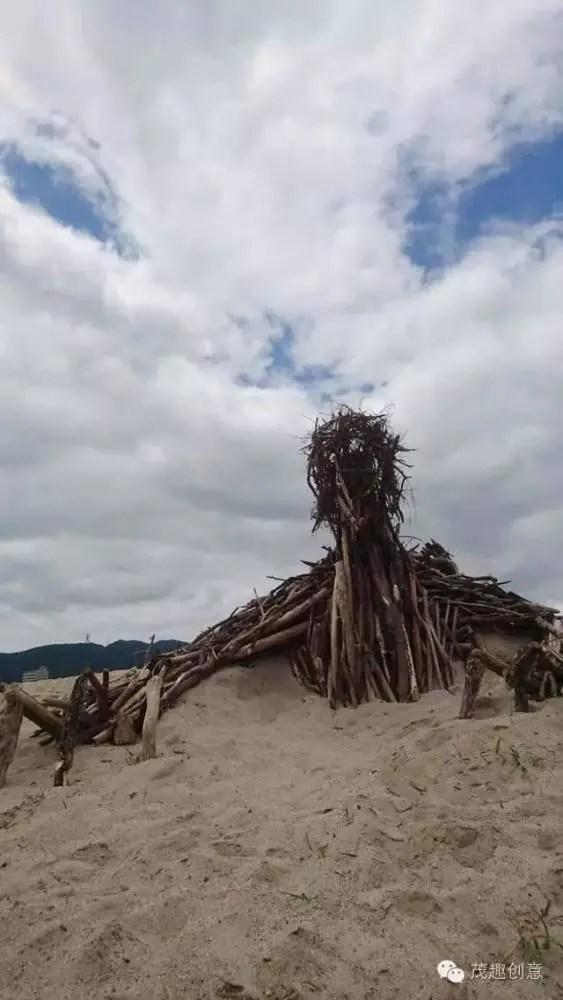 人們在海灘發現巨大生物,形成原因讓人們讚嘆不已