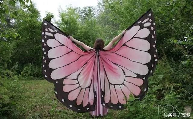 美輪美奐的超逼真手繪披肩,滿足你「化蝶飛」