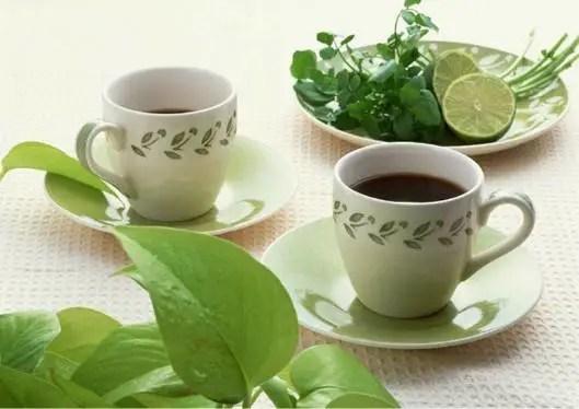 與茶相剋的食物及禁忌,你知道多少?