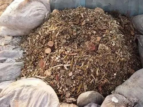 13種自製花肥方法,不花一分錢!