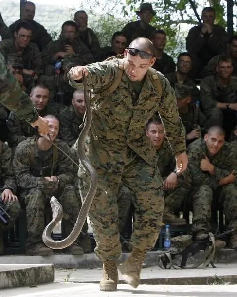 泰國金色眼鏡蛇軍事演習,參加士兵必須生喝蛇血
