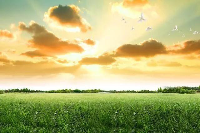 我們要的愛情,一個你,一顆心,一心一意,一輩子