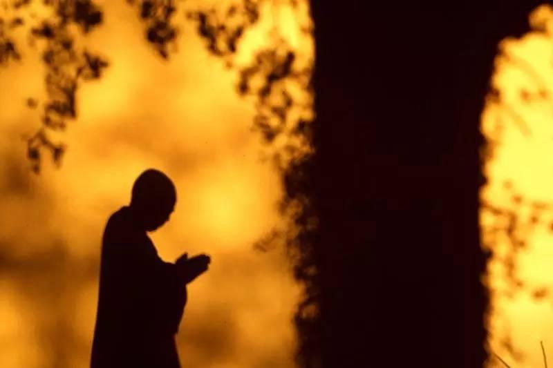 真正的學佛人,不是要脫離生活修行,而是要用一顆修道心生活