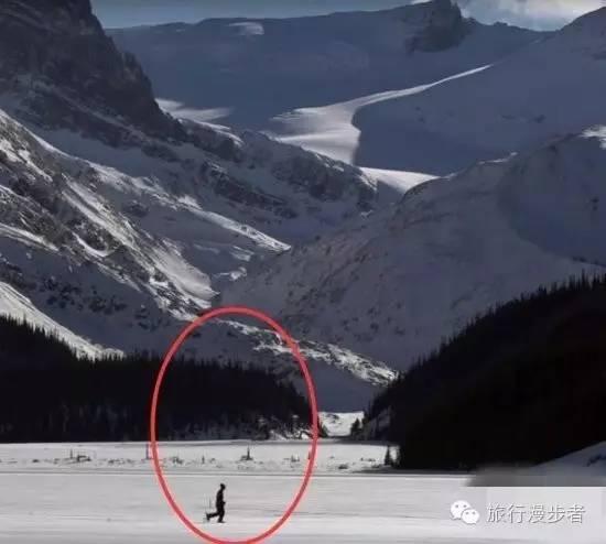 一男子在雪地亂跑,看到最後真相的時候,徹底服的五體投地