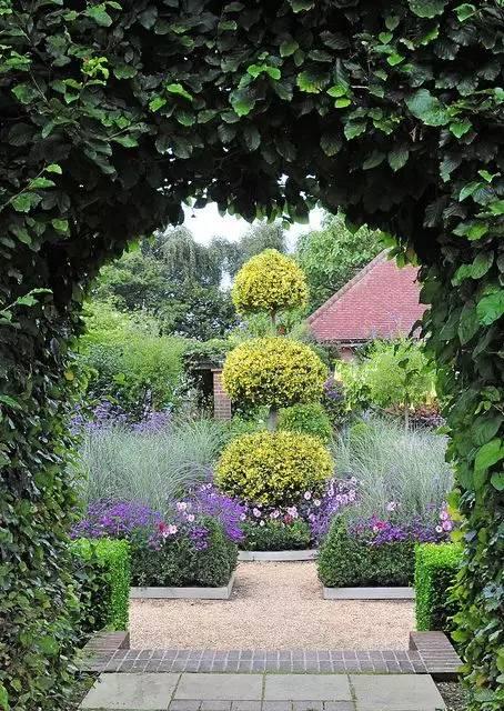 花園植物種植?五大重點第713期