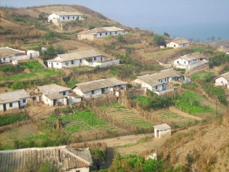韓國鄉村的真實面貌,人們並沒有想像中的光鮮